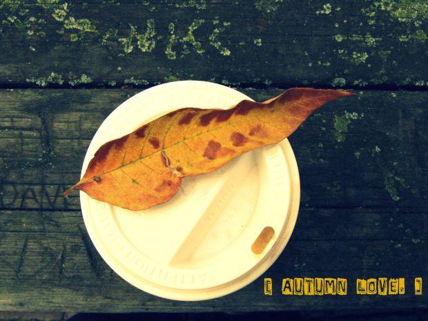 autumnlove